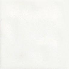 AG 18 Bianco 10,7х10,7