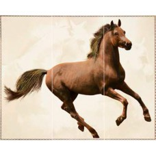 Comp.CAVALLO MARRONE (3pcs of 25x60) 75x60