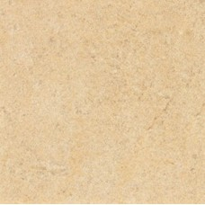 Absolute Stone Напольная 15601 oro 30x30