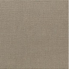 Pav.TOULOUSE TAUPE RC 60x60