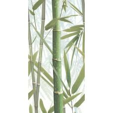Bamboo 1 DW9BMB104 Декор 249*500