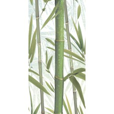 Bamboo 2 DW9BMB204 Декор 249*500