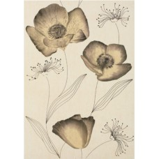SIENA FLORAL  Decor Beige